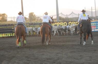 Campionato Regionale Team Penning 2014, il Southern Ranch conquista i tre gradini del podio
