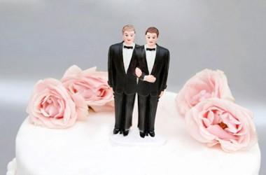 Disegno di legge del Governo relativo ai matrimoni omosessuali