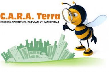 Oscar Green 2014 _ Vota e fai votare CARA Terra_AIACeNa 5