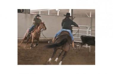 """Team Penning, Torneo """"The Best Horse Sergio Reiners"""": Di Lillo, Telese, Di Cerbo la triade vincente"""