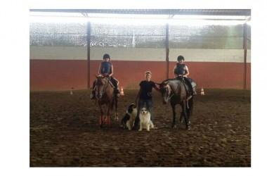 Cavalli e Natura per i piccoli sanpotitesi: l'Amministrazione Imperadore punta all'educazione ambientale