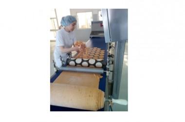Biodigestore, a 100 metri si producono prodotti biologici e biodinamici d'eccellenza