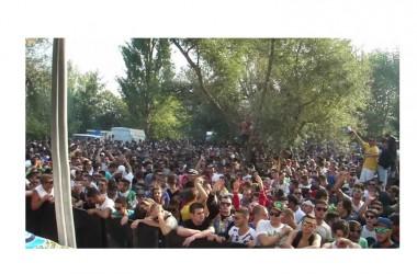 Il prefetto di Caserta intervenga per fronteggiare l'inquinamento acustico sullo svolvimento dei rave party presso l'Old River