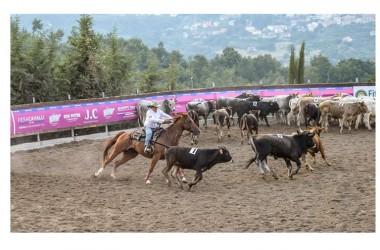 Team Penning: Coppa Italia Sud e Campionato Regionale 2015 in dirittura d'arrivo, tre giorni di equitazione no-stop