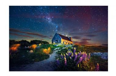 (Nuvole permettendo) è la notte di San Lorenzo: tutti a caccia di stelle cadenti con il naso all'insù, per esprimere un desiderio