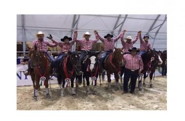 Equitazione: la Campania vince il Campionato Italiano