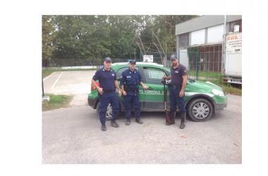 Operazione anti bracconaggio del Corpo Forestale dello Stato, in collaborazione con le Guardie Giurate zoofile dell' EMPA (Ente Mediterraneo Protezione Animali) nel territorio di Acerra (NA)
