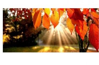 Meteo, la lunga estate di San Martino: caldo  ancora per 10 giorni, poi arriva l'autunno