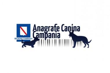 Registrazione anagrafe canina gratuita iniziativa Oipa Cancello Arnone