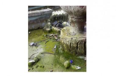 San Nicola La Strada: spaventoso degrado della villa comunale