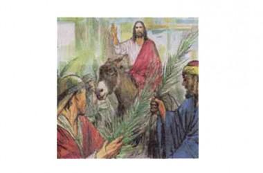 La Liturgia della Domenica delle Palme