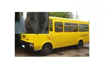 La straziante morte di Rosa, uccisa dallo scuolabus: aperte le indagini