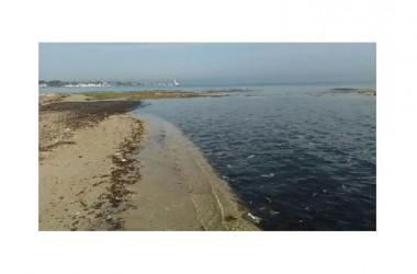 """Pulizia dei litorali. Quantità enormi di plastica e la stagione balneare prossima ad arrivare. Lo """"Sportello dei Diritti"""": s'intervenga subito"""