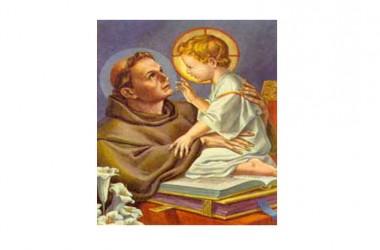 Il SANTO di oggi 13 Giugno – Sant' Antonio di Padova Sacerdote e dottore della Chiesa