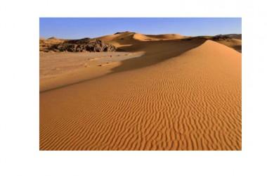 Migranti, oltre 34 cadaveri tra cui venti bambini trovati nel deserto del Sahara. Morti di sete