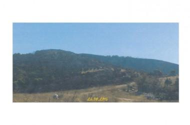 Castelmorrone: Ancora  roghi sulle colline dei Monti Tifatini.