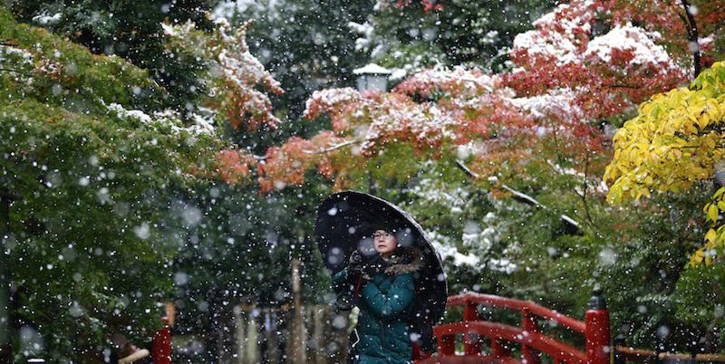 Nel giardino del tempio Tsurugaoka Hachimangu a Kamakura, 24 novembre 2016 (AP Photo/Shizuo Kambayashi)