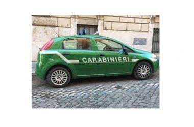 Carabinieri denunciano bracconiere nel parco nazionale del Vesuvio, multa da 1.000 euro e fucile sequestrato