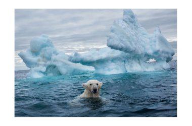 Cambiamento climatico, cosa c'è da sapere