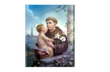 IL SANTO di oggi 13 Giugno – Sant' Antonio di Padova