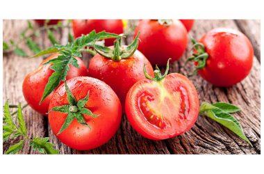Elogio dei pomodori, straordinari contro i tumori e rappresentano una potentissima barriera anti-cancro.