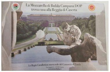 Mozzarella vs Burrata, De Luca molto meglio del Consorzio della DOP