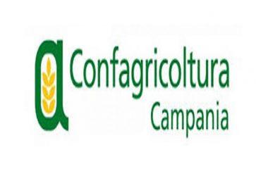 """Confagricoltura Campania """"Totale soddisfazione per l'atto d'indirizzo della Commissione Agricoltura del Consiglio Regionale: cancella anche Mozzarella di Bufala Campana Dop Frozen"""""""