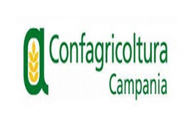 Confagricoltura Campania chiede un assessore regionale all'agricoltura titolare e la proroga dei termini per misura 4.1.1 del Psr Campania 2014/2020