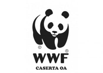 DOMANI, MERCOLEDI' 23 MAGGIO, RITORNA LETTERATITUDINI CON UN EVENTO SULL'AMBIENTE CON IL WWF DI CASERTA