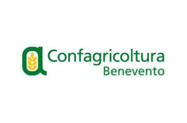 Convocata l'assemblea generale dei soci dell'Unione agricoltori di Benevento per il 4 luglio 2018, previsto il rinnovo degli organismi dirigenti