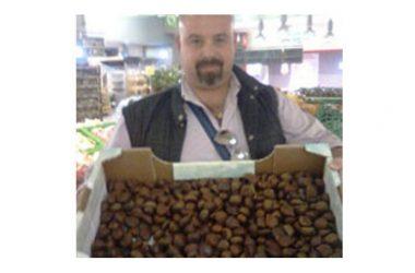 Nuove specialità agroalimentari italiane riconosciute dall'Unione Europea Marrone di Serino»/«Castagna di Serino