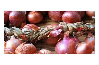 """""""Eccellenze Alifane"""",  si festeggiano le cipolle e i fagioli di Alife"""