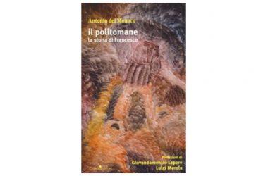 """Presentazione del libro: """"Il politomane la storia di Francesco"""" dell'On. Antonio del Monaco"""