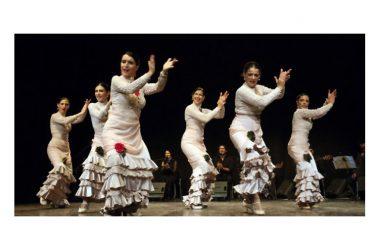 """Domenica 28 aprile: Compagnia Flamenco Lunares in """"Las parabras del baile"""", al Teatro Comunale Costantino Parravano di Caserta"""