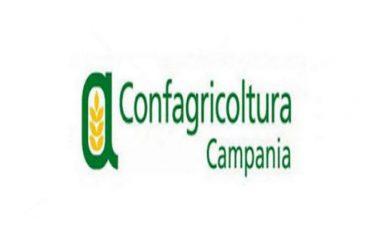 Confagricoltura Campania riconferma gli organismi dirigenti