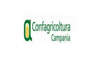 Confagricoltura Campania, firma del Regolamento per il riconoscimento dei Distretti Agroalimentari e Rurali da parte del presidente De Luca è una buona notizia