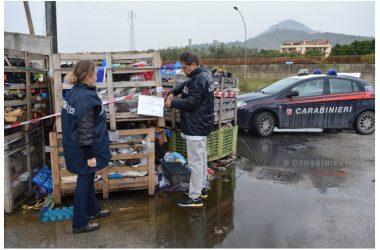 Attività dei Carabinieri Forestale di Caserta
