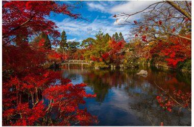 Foliage: i posti più belli del mondo dove vedere i colori dell'autunno