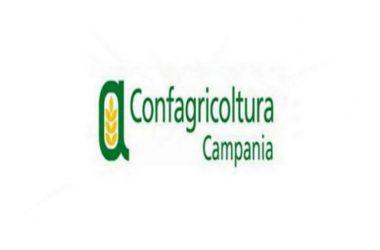 """Confagricoltura Campania """"La politica regionale scommetta sull'innovazione"""""""