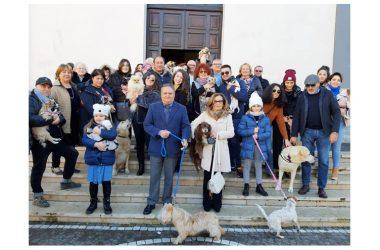 Cancello ed Arnone:  BENEDIZIONE DEGLI ANIMALETTI AMICI DELL'UOMO