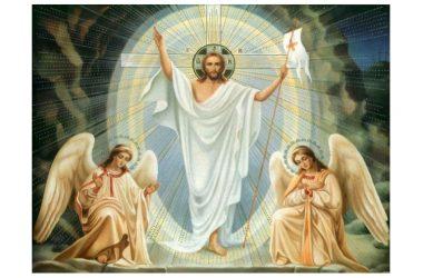 IL VANGELO SECONDO SAN MATTEO – 28 (Preghiamo insieme nel tempo di Quaresima)