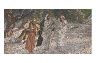 Riflessione al Vangelo di Domenica 26 Aprile 2020 a cura di Don Franco Galeone