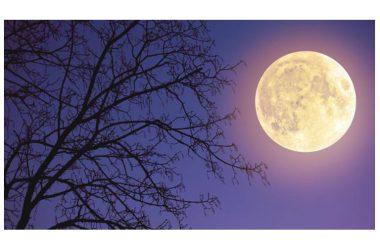 La super luna – spettacolare!