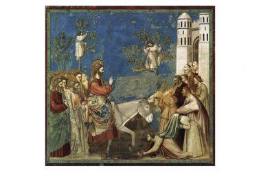 La Domenica delle Palme nel racconto di Giotto