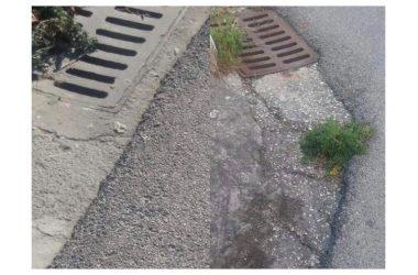 Ratti e cattivi odori provenienti dalle caditoie, minoranza a Cesa chiede interventi urgenti