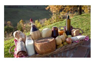 """Regione Campania: varato nuovo regolamento per le aziende agricole,  de Cristofaro: """"Continuiamo a sostenere le nostre imprese"""""""