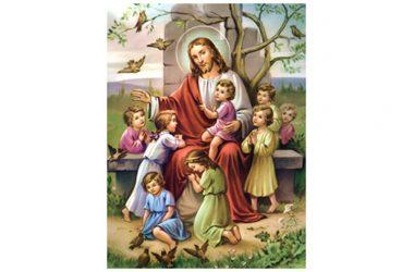 Riflessione al Vangelo di Domenica 4 Ottobre 2020 a cura di Don Franco Galeone