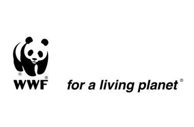 """ll Liceo Artistico """"San Leucio"""" di Caserta sposa il nuovo progetto formativo del WWF Italia """"One Planet School"""