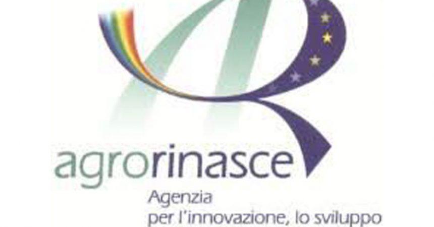 Pubblicato il bilancio sociale al  31.12.2019 di Agrorinasce. Risultati eccezionali nella valorizzazione dei beni  confiscati