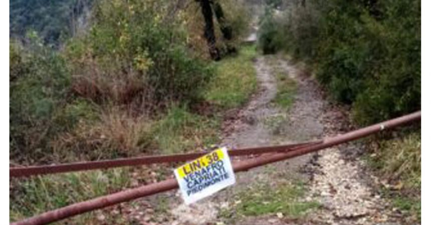 Problema trasporti a Castel Volturno, lanciata  petizione per il servizio bus